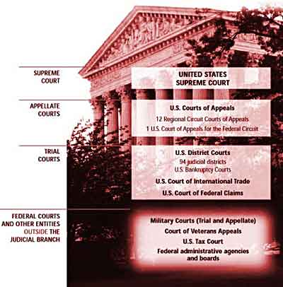 Diagram Of Court System