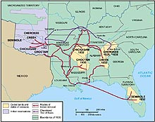 jacksonian democracy and modern america org routes of n removal